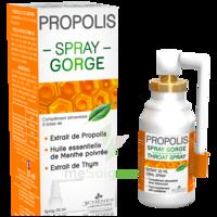 3 Chenes Propolis Spray Gorge Fl/25ml à CAHORS