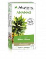 Arkogélules Ananas Gélules Fl/45 à CAHORS