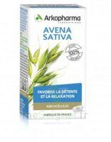 Arkogélules Avena Sativa Gélules Fl/45 à CAHORS