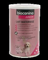 Biocanina Lait Poudre Maternisé B/400g à CAHORS
